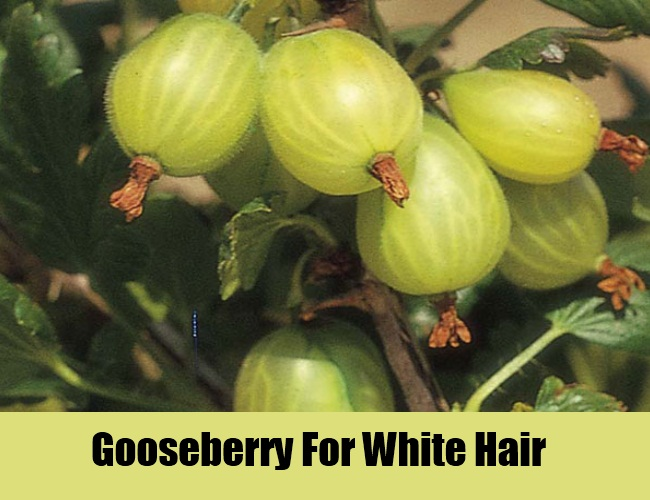 Gooseberry For White Hair