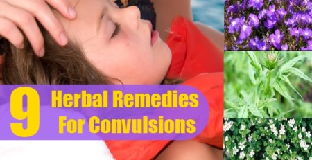 Herbal Remedies For Convulsions