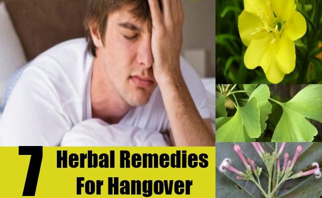 Herbal Remedies For Hangover
