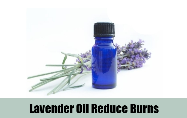 Lavender Oil Reduce Burns