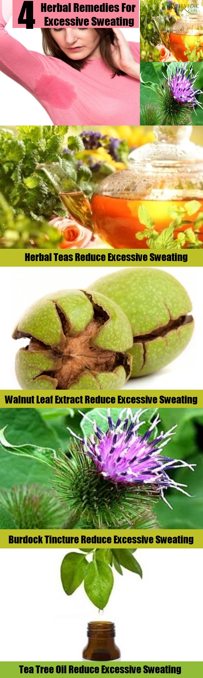 Simple Herbal Remedies For Excessive Sweating