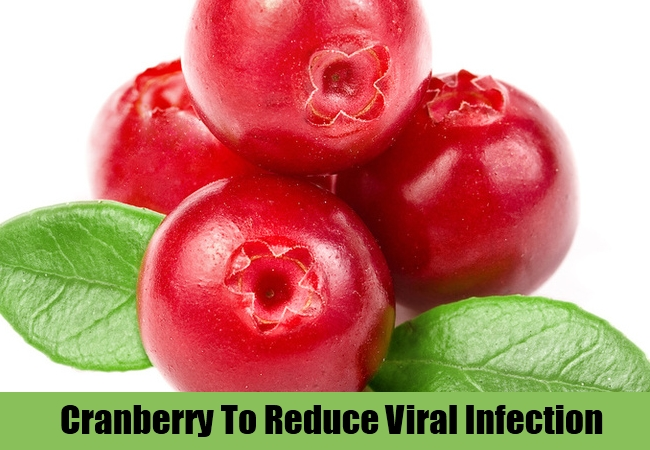 Cranberry To Reduce Viral Infection