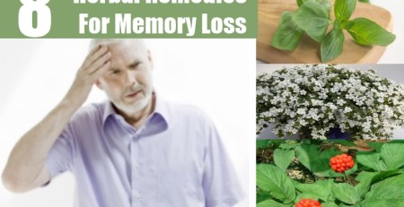 Herbal Remedies For Memory Loss