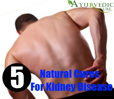 5 Useful Natural Cures For Kidney Disease