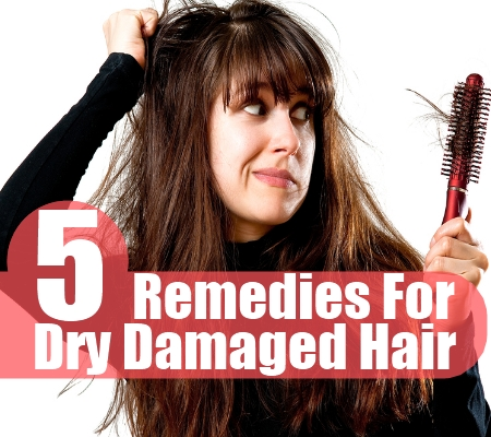 Dry Damaged Hair