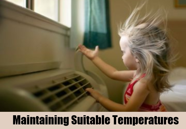 Maintaining Suitable Temperatures