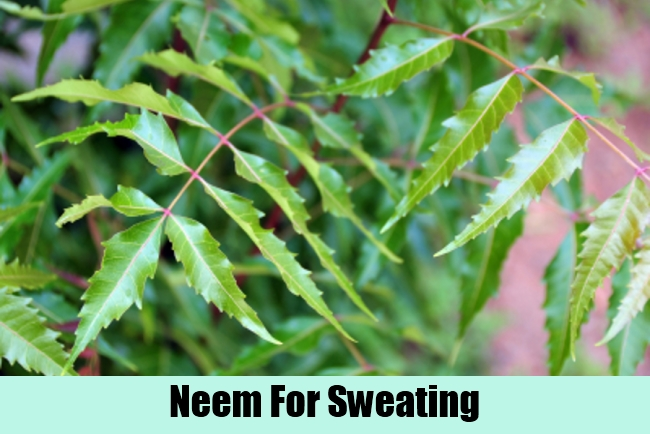 Neem For Sweating