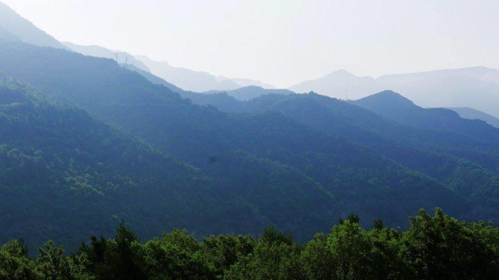 Vedicare, Spa ayurvédique - l'ayurveda, science de la vie