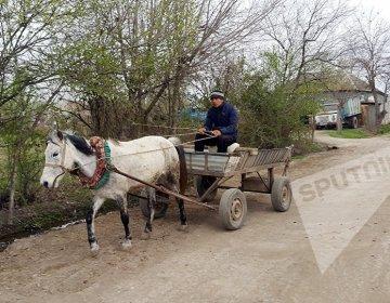 Didərginlərdən təşkil olunan kənd FOTO