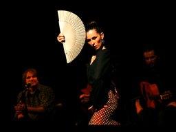 azabache_flamenco-0006