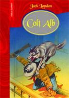 colt-alb