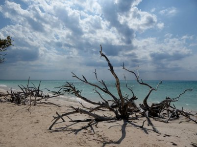 Strandkunst. Cayo Jutias
