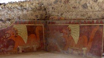 GRRRRR puma's. Teotihuacán
