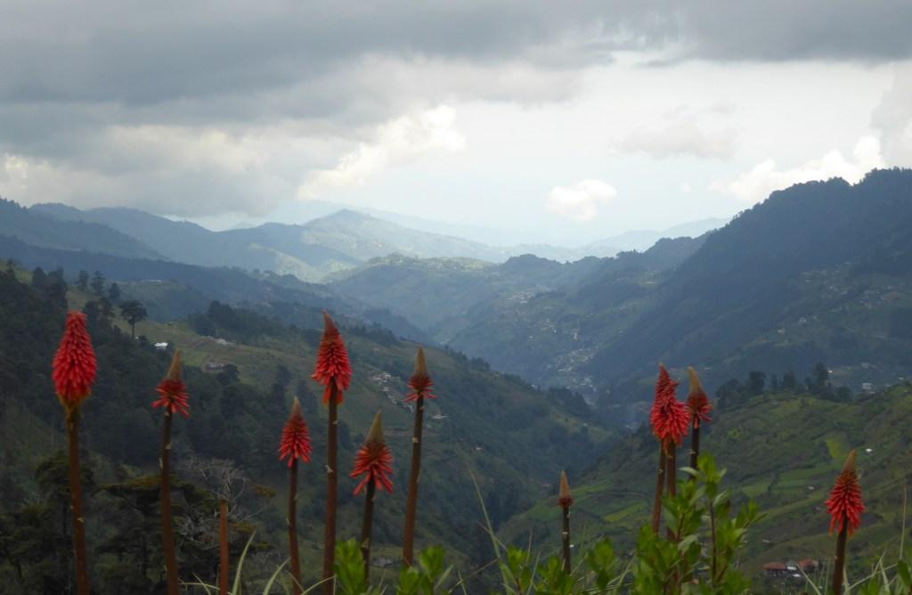 Mooi uitzichtje. Todos Santos