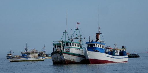 Leuke vissersbootjes in de haven van Paracas.