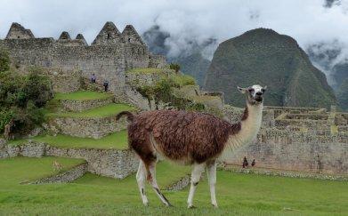 Nee nee de lens hoeft niet schoon gemaakt te worden. Machu Picchu