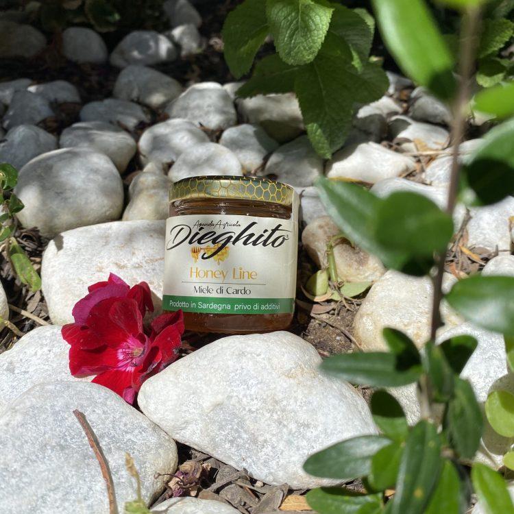 Miele di Cardo di Sardegna, 100% Naturale
