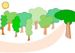 boschi legno