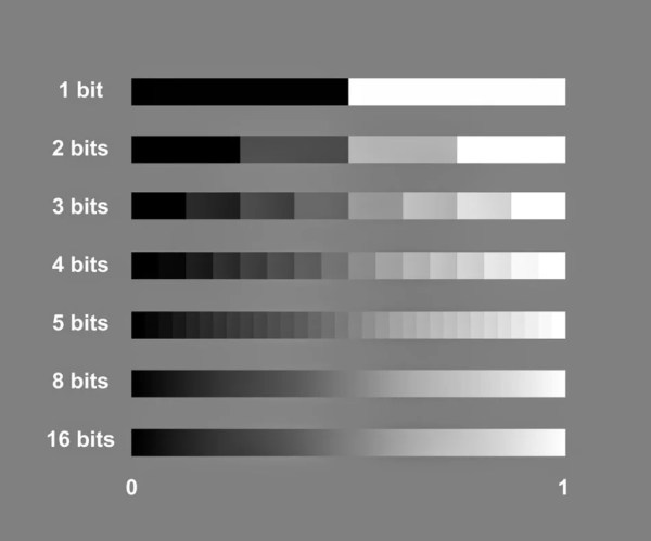 Scientific Imaging – What is the Bit Depth of a Camera?