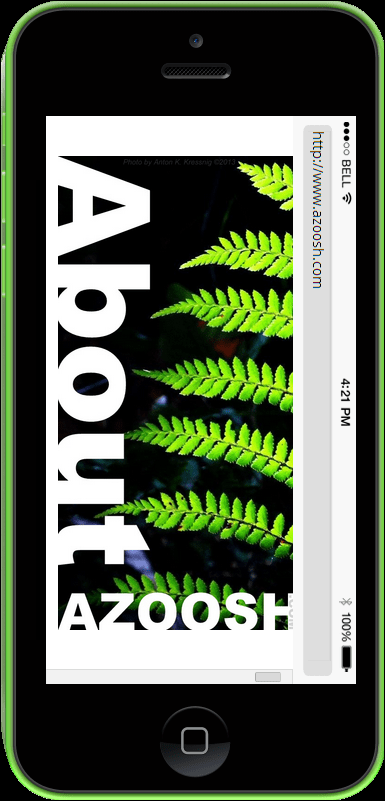 Black new iphone5 screen shot about Azoosh.com test website green tree fern leaves