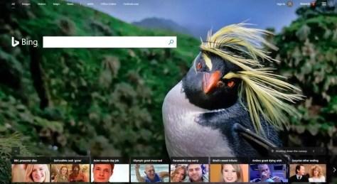 Bing search engine 2018 website screenshot bird photo