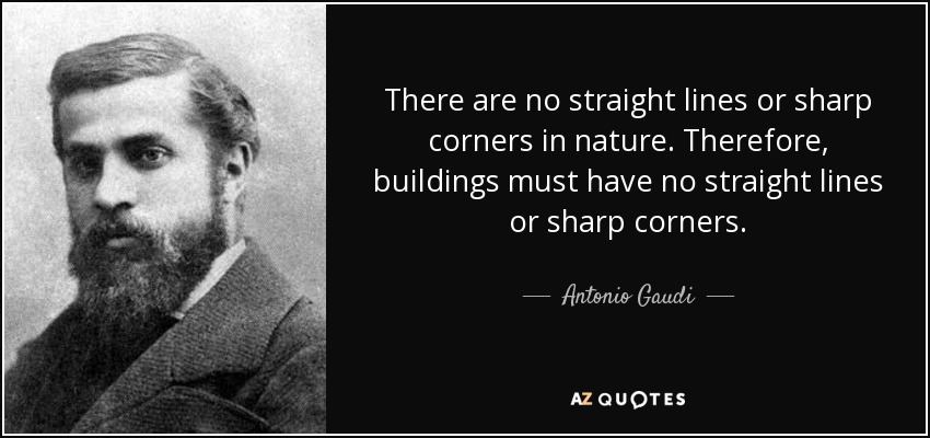 Image result for there are no straight lines in nature quote