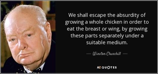 Resultado de imagen de churchill chicken quote