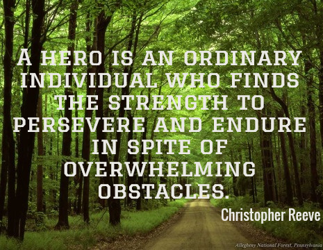 A hero is an ordinary individual who finds the strength to persevere and endure in spite of overwhelming obstacles. - Christopher Reeve