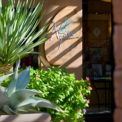 Agave the Arizona Spa Westin Kierland