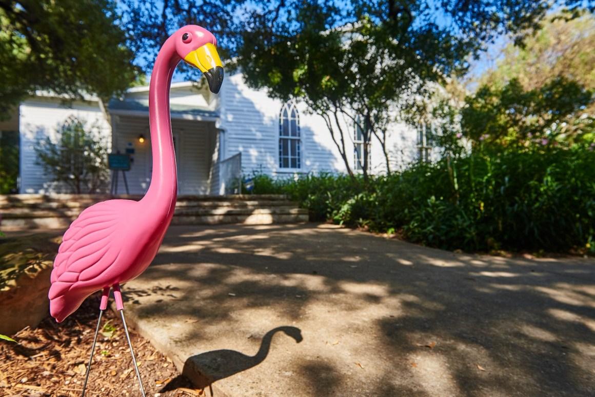 Flamingos at an Austin Style Wedding.