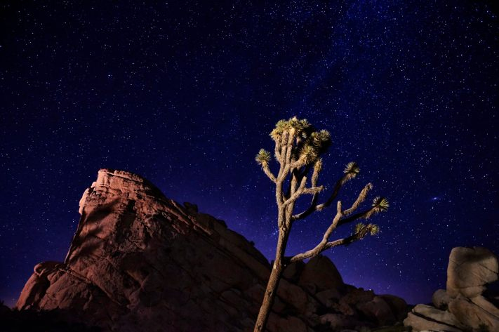 Sensor to Screen: A Joshua Tree Astrophoto Affinity Photo Edit Walkthrough