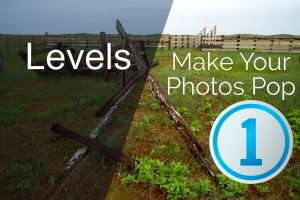 Capture One Levels Tool - Make Your Photos Pop