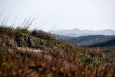 Padre Island Photo Workshop - Landscape - Birds - Astrophotography - 004