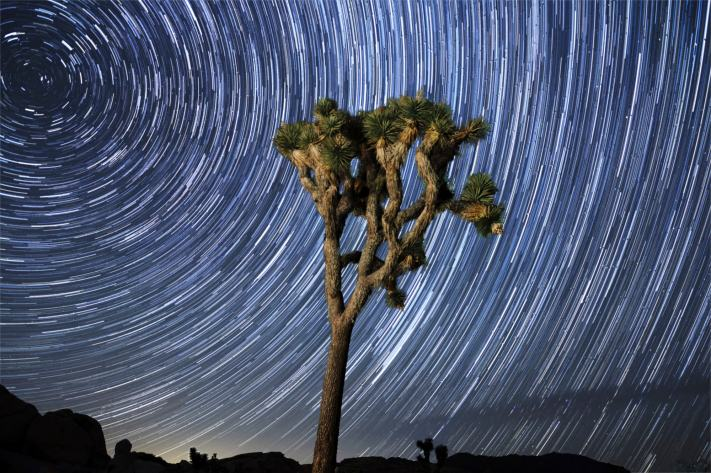 Joshua Tree Destination Photo Workshop