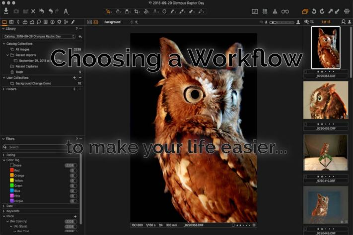 Choosing a workflow to make your life easier - project based workflow - semi-monolithic workflow