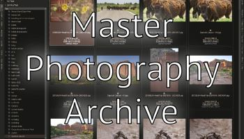 Google Photos Master Archive - Professional Photography Workflow