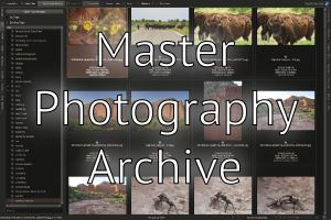Workflow: Setting up a Master Photography Archive