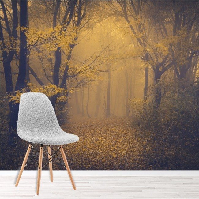 Misty Wood Wall Mural Forest Landscape Wallpaper Living