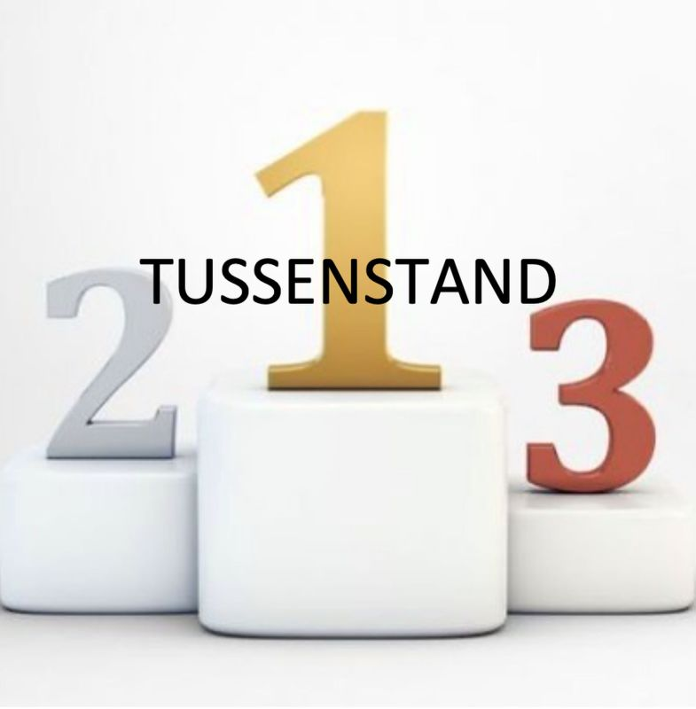 Tussenstand Swimteam Tryout Series
