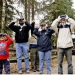 a group of people, young and old, in a park staring up at the sky with binoculars on the how people search blog post