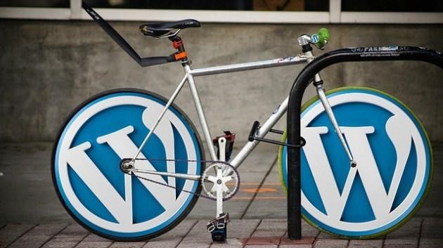 Wordpress SEO Services from B-SeenOnTop