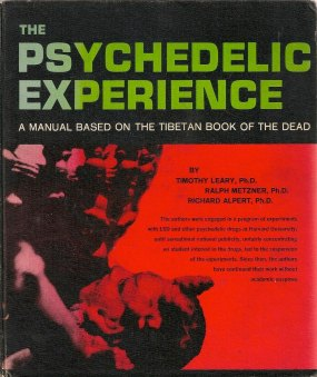 Psychedelic experience