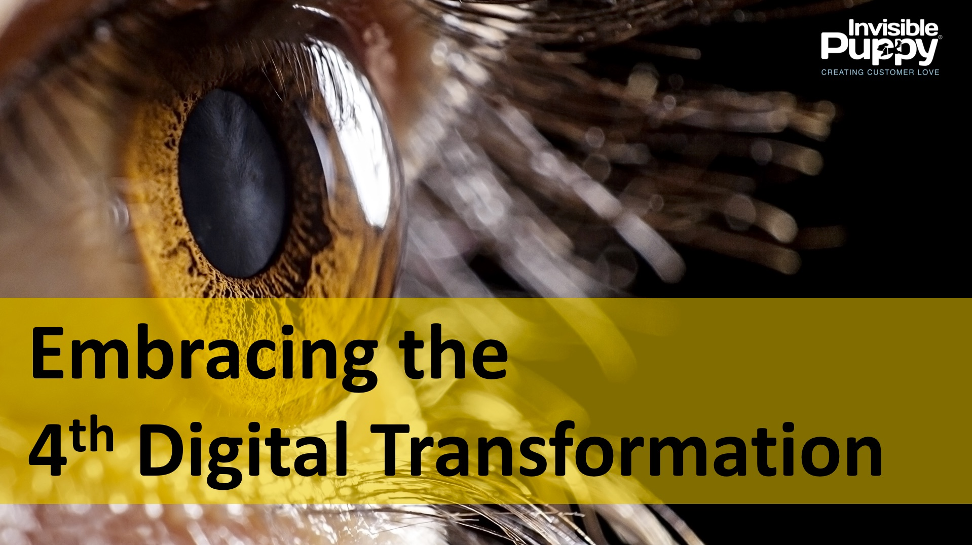 how to embrace - fourth digital transformation