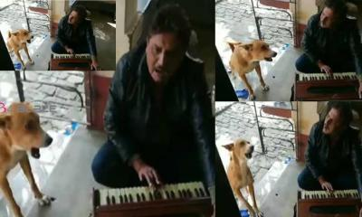 More than 20 lakh viewers; The dog who sings with the owner. Watch video