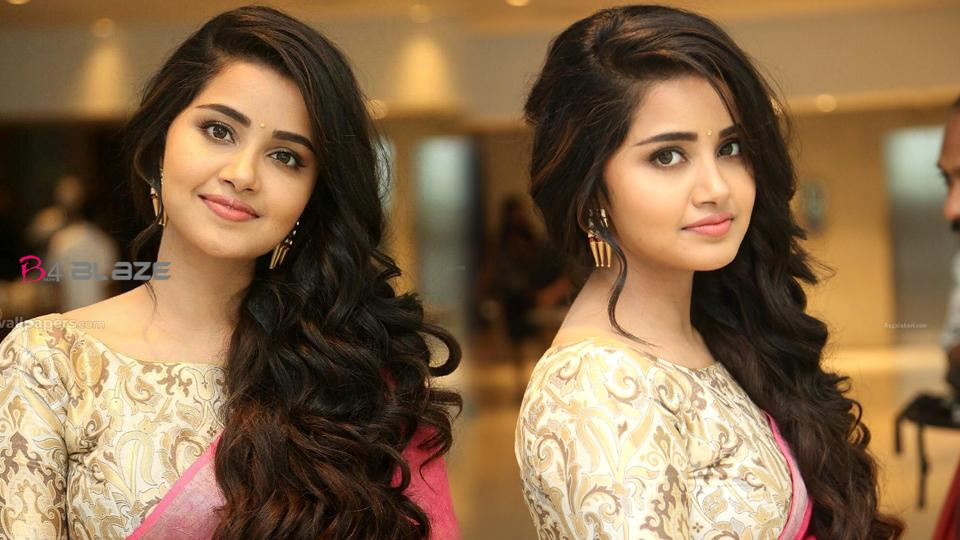 Like Merry, there has been love and breakup in my life Anupama Parameswaran