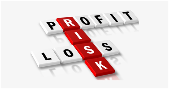 Profit and loss  risk taking