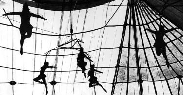 LEO MATIZ circo