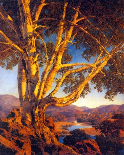 Maxfield Parrish - Old White Birch