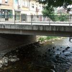 Сали мост во Битола