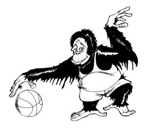 Orang Utan Basketball 1999